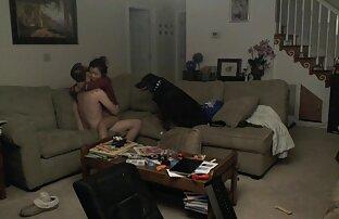 زن پرست به ادرس کانال سکسی درتلگرام پایان رسید پوره